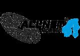 Allnet Logo Nordic